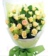 20premium champagne roses . White bellflower Tang cotton