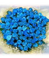 50 Blue roses